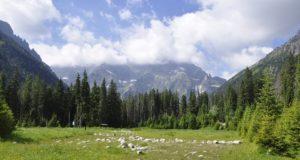 Zdolejte tři nejhezčí trasy ve Vysokých Tatrách