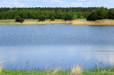 Kde najdete nejkrásnější lesní koupaliště v Česku?